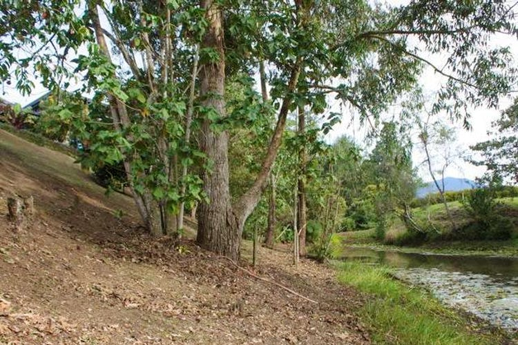 Foto 9 de Lote en La Ceja, Antioquia