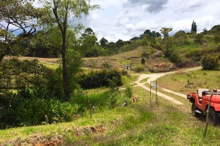 Portada Lote en La Ceja-Antioquia, con 5000 mt2.