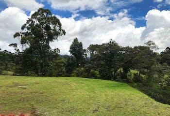 Montecapiro, Lote en venta en Corredor San Antonio La Ceja  de 3000m²