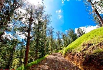 Bosques de Luisines 2, Lote en venta en Casco Urbano El Retiro de 3629m²