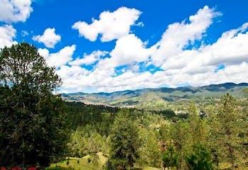 Bosques de Luisines 2, Lote en venta en Casco Urbano El Retiro de 3176m²