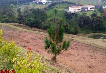 Reserva del Retiro, Lote en venta en Casco Urbano El Retiro de 5400m²