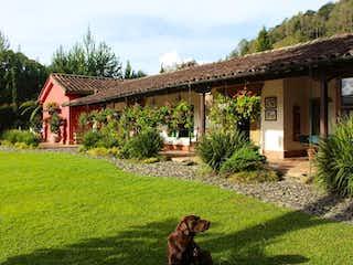 Un perro en un patio con una casa en el fondo en Finca