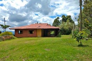 Lote en venta en Guayabito 22195m² con Jardín...