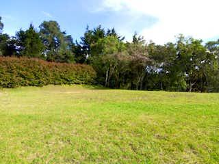 Una vista de un campo herboso con árboles en el fondo en Lote En Venta En Envigado Alto De Las Palmas