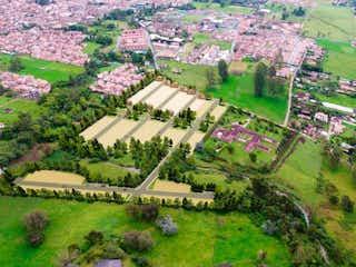 Un gran jardín con un montón de plantas y flores en Jardines de la Colombiere Lotes
