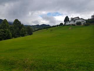 Una vista de un campo herboso con montañas en el fondo en Conjunto