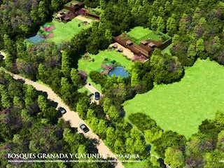 Una vista de un jardín en un jardín en Bosque Granada