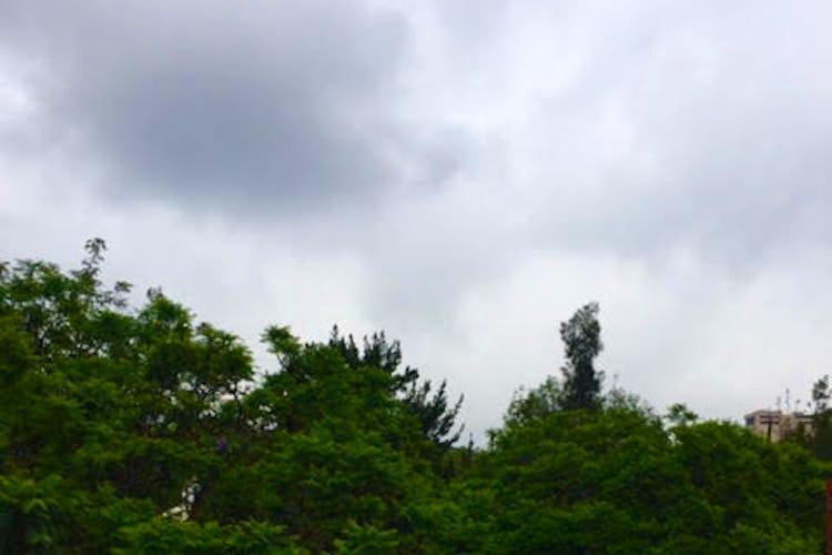 Foto 26 de Venta Casa Bosques del Pedregal