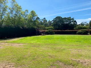 Una vista de un campo herboso con árboles en el fondo en Lote en venta en Llanogrande de 3179m2