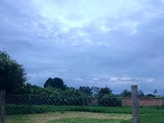 Un campo herboso con un árbol en el fondo en Lote en venta en Hacienda San Simón  de  3584m2