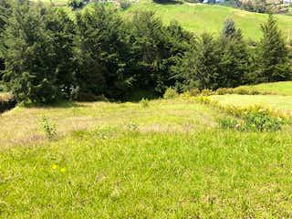 Una vista de un campo herboso con árboles en el fondo en Lote en venta en El Retiro de 1228mts