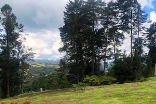 Altos de Arrayanes, Lote en venta en Alto De Las Palmas de 3447m²