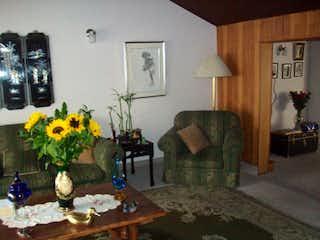 Una sala de estar llena de muebles y una planta en maceta en Casa en venta en Contador, 231mt de dos niveles