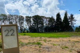 Parcelación Monterosso, Lote en venta en Alto De Las Palmas de 1101m²