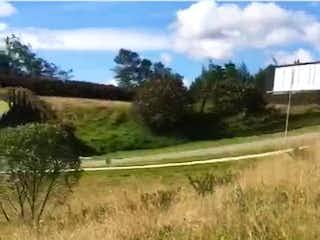 Una vista de un campo con árboles en el fondo en Prado Largo