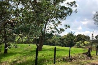 Llano Grande, Lote en venta en Altos De La Pereira de 6521m²