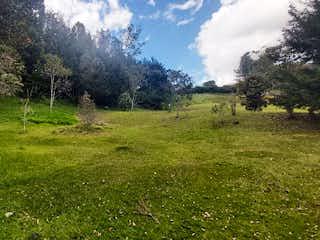 Una vista de un campo herboso con árboles en el fondo en Lote en Venta EL RETIRO