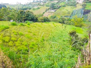 Una vista de un valle con una montaña en el fondo en Lote en Venta RIONEGRO