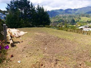 Un par de animales que están de pie en la hierba en El Retiro, Lote en venta en Casco Urbano El Retiro de 155m²