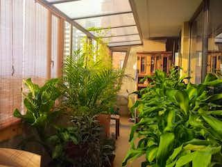 Una planta que está sentada delante de la ventana en Apartamento En Venta En Bogota Teusaquillo