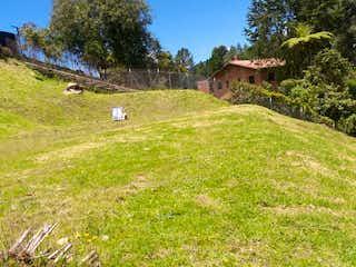 Un grupo de animales que están de pie en la hierba en 99870 - Venta Lote Alto de Las Palmas