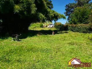 Un par de animales que están de pie en la hierba en Lote en venta en El Retiro, 5600mt