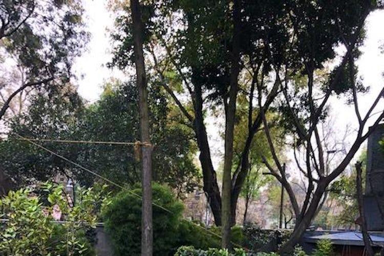 Foto 16 de Casa en venta en Lomas de Chapultepec