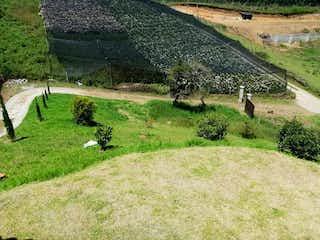 Un par de animales que están de pie en la hierba en Finca Carmen De Viboral, Casa en venta en Casco Urbano El Carmen De Viboral de 4 hab.