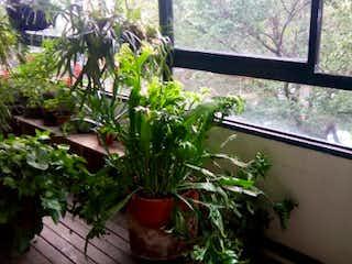 Una planta en maceta sentada en el alféizar de la ventana en Apartamento en Venta LAURELES
