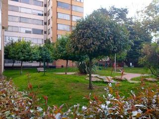 Un árbol en medio de un parque en Apartamento en venta en Pontevedra de 3 hab.