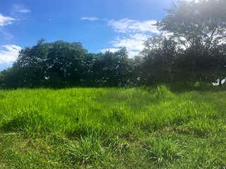 Una vista de un campo herboso con árboles en el fondo en Sopetran, Lote en venta en Casco Urbano Sopetrán de 2700m²