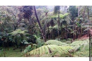 4 Parcelación Caldas Antioquia, Lote en venta de 2800m²