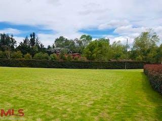 Un campo herboso con un hidrante de fuego rojo en él en No aplica