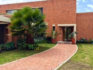 Una planta delante del edificio de ladrillos en Casa
