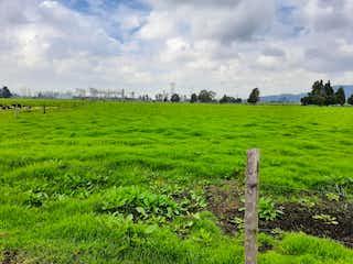 Un campo que tiene un poco de hierba en él en Finca En Venta En Tenjo Carrasquilla