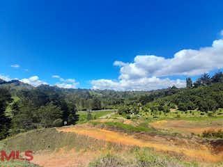 Una vista de un campo con una montaña en el fondo en Faro Verde