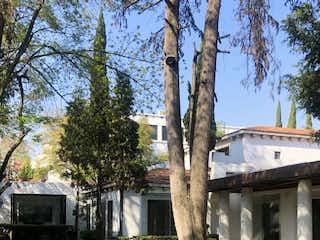 Un banco de madera sentado en la hierba cerca de un árbol en Casa en Venta en Lomas de Chapultepec Miguel Hidalgo