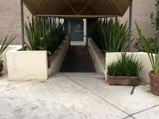 Una sala de estar con un sofá y una planta en maceta en Departamento en renta en Lomas de Vista Hermosa