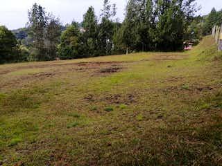 Una vista de un campo herboso con árboles en el fondo en Lote en venta en Carrizales, 5000mt