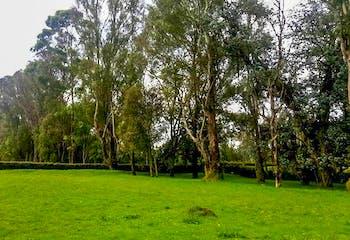Lote en Venta en Rionegro-Llanogrande, con excelente entorno natural y paisajismo.