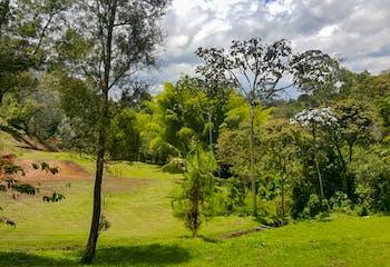 Lote en Venta en El Carmen de Viboral-Quirama, hermosa vista, excelente zona y de fácil acceso.