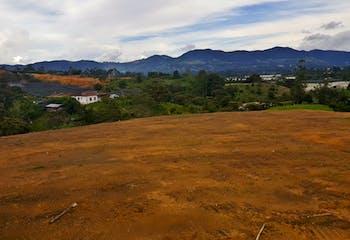 Lote en Venta en Rionegro, cuenta con lago y bosque nativo.