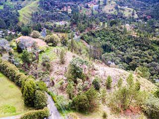 Una gran montaña con un montón de flores y árboles en 104317 - Venta Lote alto de las Palmas