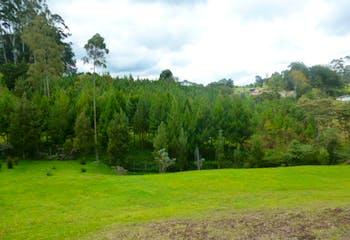 Lote en Venta en El Carmen de Viboral - entorno natural