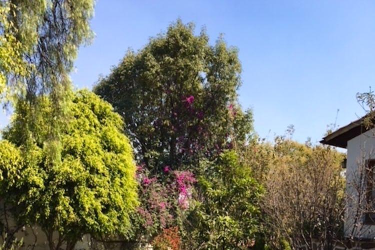 Portada Casa en venta en Lomas de Virreyes 921m2 con 6 recamaras