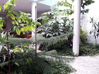 Un montón de plantas que están en un jardín en Vendo Lote Santa Ana