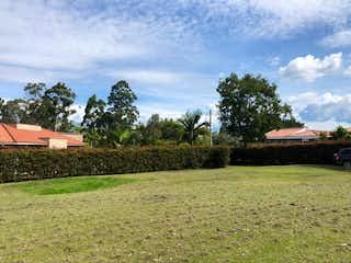 Un campo herboso con un banco y árboles en el fondo en Venta de Lote, Vilachuaga-Rionegro