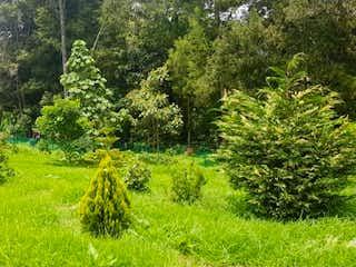 Un árbol en medio de un campo de flores en Lote en venta en Alto de Las Palmas Indiana de 2125mts
