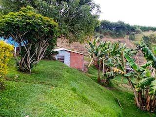 Una casa que tiene un árbol en ella en Lote de 6500 mts2 con casita campesina vía al Peñol. buen clima
